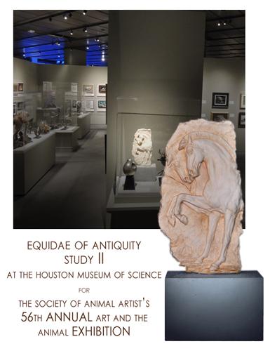equidae_in_museum